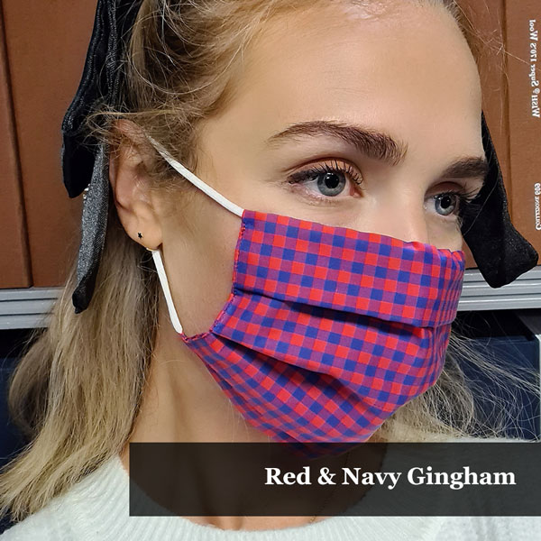 Red & Navy Gingham